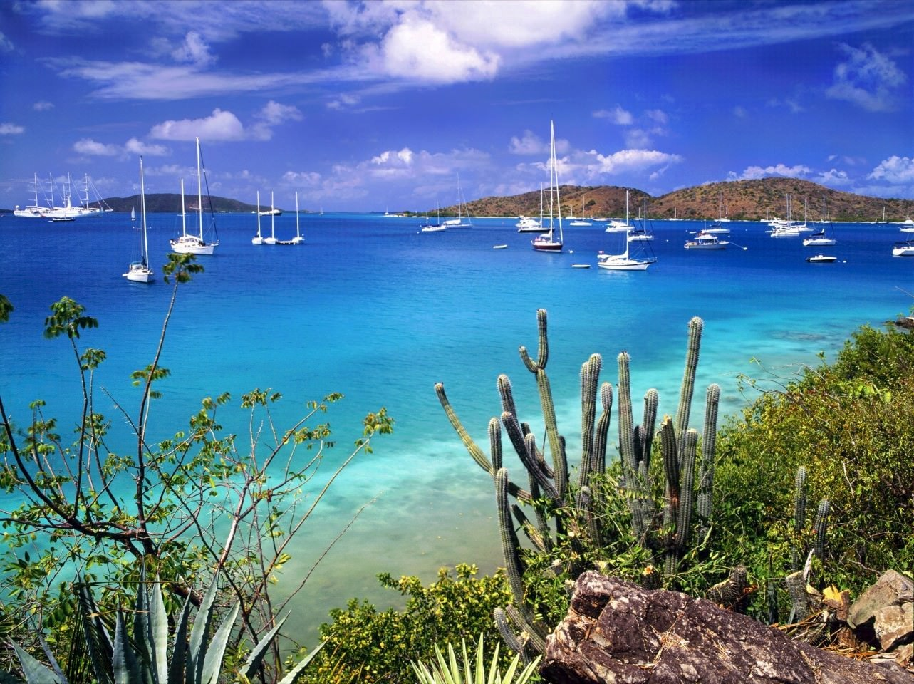 British Virgin Islands Uk Vat